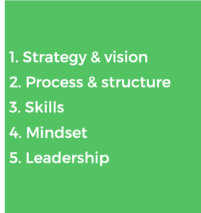 strategy and vision, process and structure, skills, mindset and leadership